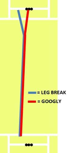 Photo showing difference in spin direction between leg break and googly