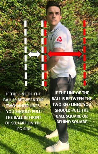 Ricky Ponting's pull shot rules