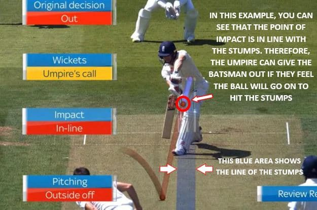 This image shows a batsman being hit in line with the stumps