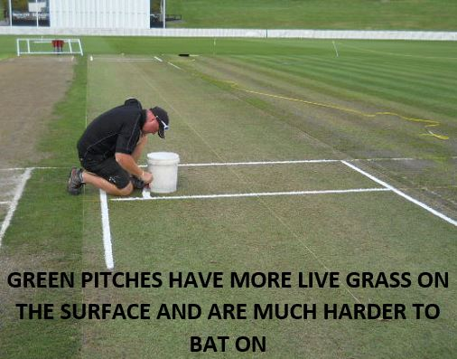 A picture showing a cricket pitch with green grass on it